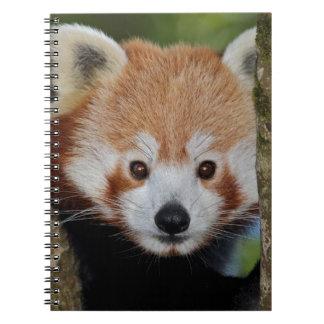 Panda Portrait Notebook