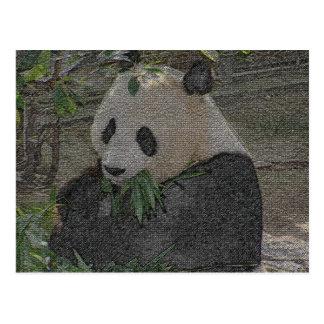 PANDA POST CARD