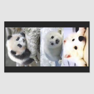 Panda-Seal-Mini American Eskimo Rectangular Sticker