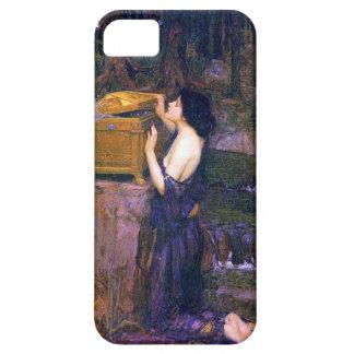 Pandora's Box Iphone 5 and  Case