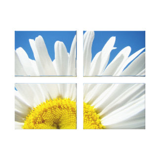 Panel Art Prints White Daisy Flower Blue Sky Gallery Wrap Canvas