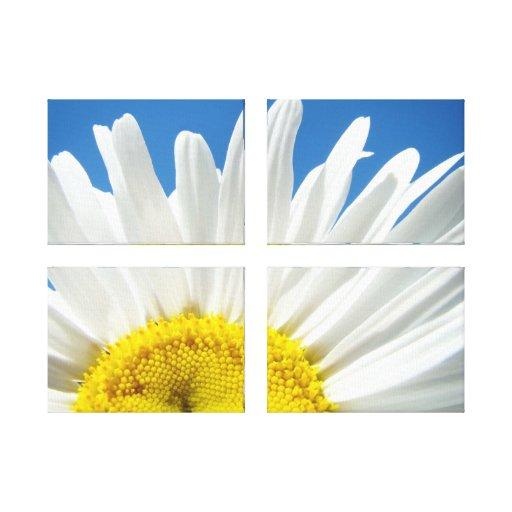 Panel Art Prints White Daisy Flower Blue Sky Gallery Wrap Canvas