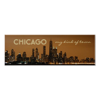 Panoramic Chicago Night Skyline Poster