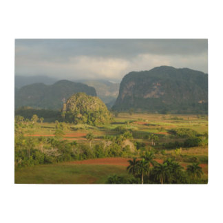 Panoramic valley landscape, Cuba Wood Wall Decor