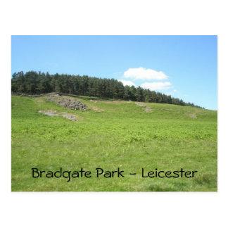 Panoramic View Bradgate Park Postcard