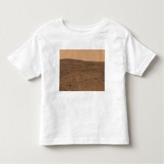 Panoramic view of Mars 8 Toddler T-Shirt