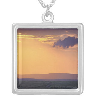 Panoramic view of single acacia tree at square pendant necklace