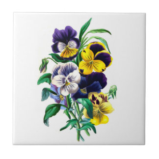 Pansies Ceramic Tile