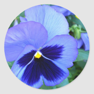 Pansies - CricketDiane Photographic Floral Art Classic Round Sticker