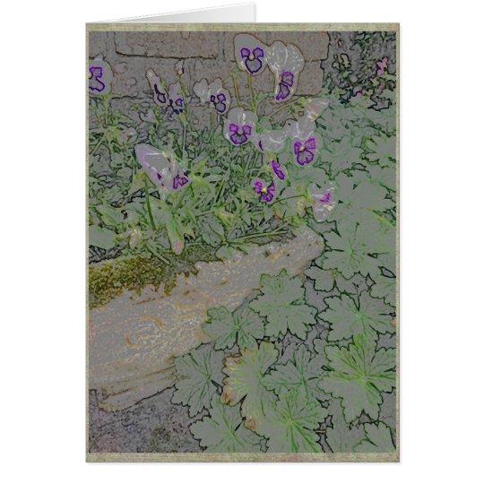 Pansies in terra-cotta planter card