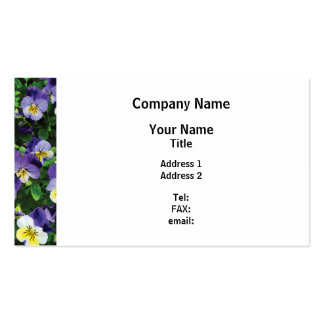 Pansies Pack Of Standard Business Cards