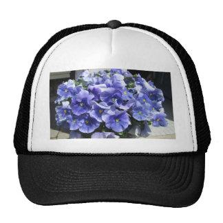 Pansies Sky Blue Cap