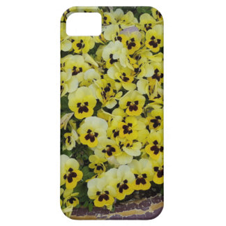 Pansies Yellow Black iPhone 5 Cases