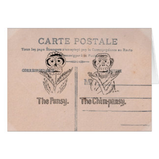 Pansy and Chimp Humor Card