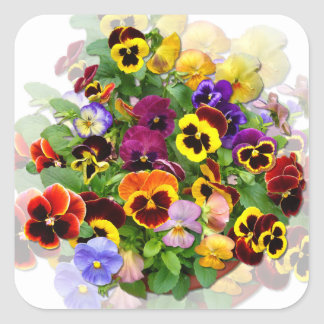 PANSY BEAUTY ~Square  Stickers