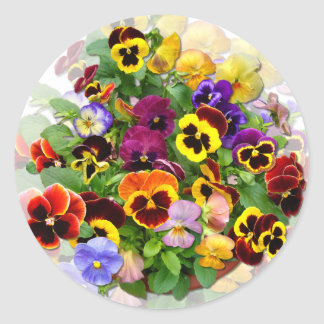 PANSY BEAUTY ~ Stickers
