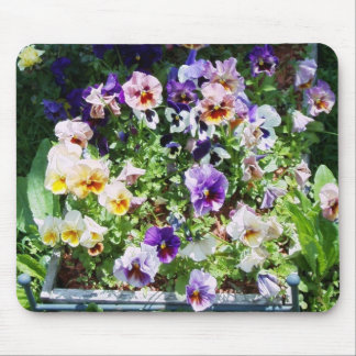 pansy bed mouse pad