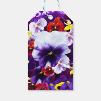 Pansy Celebration, Gift Tags