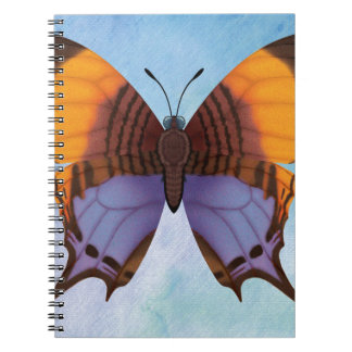 Pansy Daggerwing Butterfly Notebooks