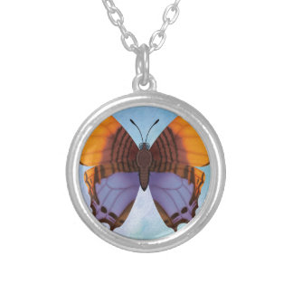 Pansy Daggerwing Butterfly Silver Plated Necklace