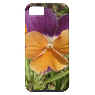 Pansy Jolly Joker iPhone 5 Cases