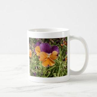 Pansy Jolly Joker Coffee Mugs