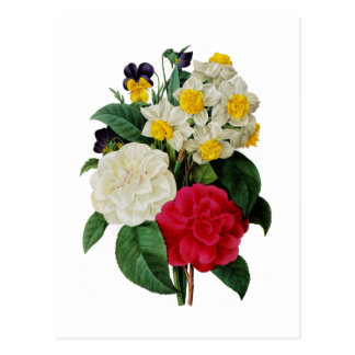 Pansy, Narcissus and Camellia Bouquet By Redoute Postcard