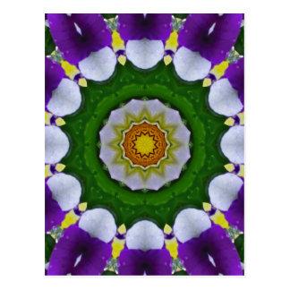 Pansy, Pansies Nature, Flower-Mandala Postcard