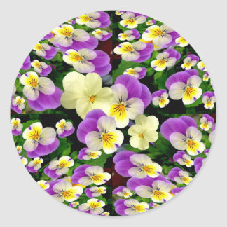 Pansy Perfect ~ Envelope Sealers/Stickers Classic Round Sticker