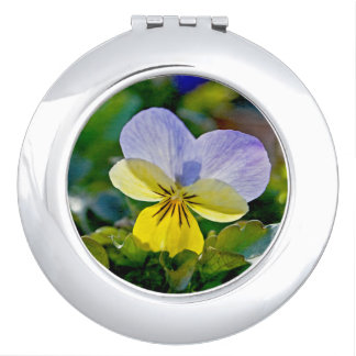 Pansy Perfection Compact Mirrors
