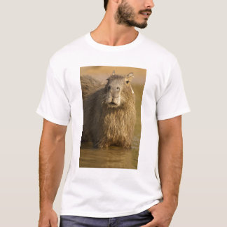 Pantanal, Brazil, Capybara, Hydrochoerus T-Shirt