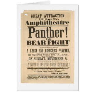 Panther and Bear Fight Advertisement (1293A) Greeting Card