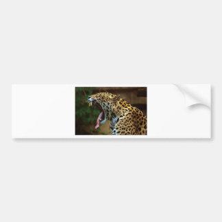 Panther Bearing Teeth Bumper Sticker