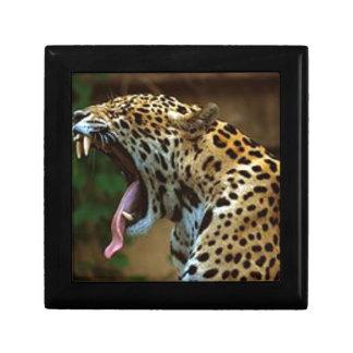 Panther Bearing Teeth Gift Box
