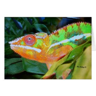 Panther Chameleon Card