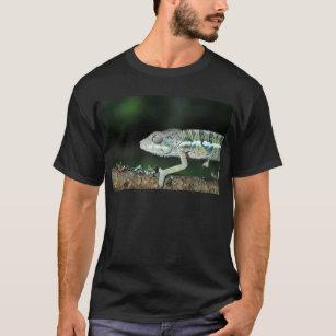 panther chameleon T-Shirt