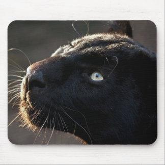Panther Mouse Pad Mousepad Print Black Big Cat