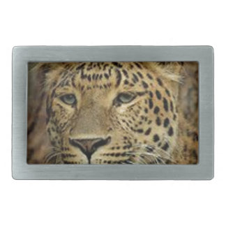 Panther Stalking Belt Buckle