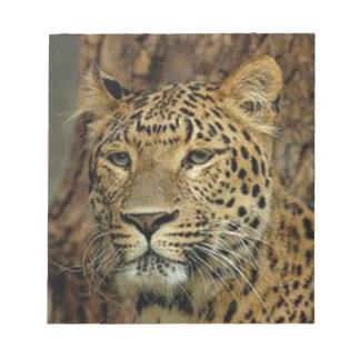 Panther Stalking Notepad
