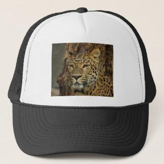 Panther Stalking Trucker Hat