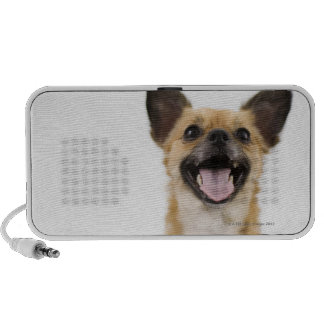 Panting dog travel speaker