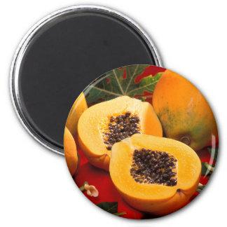 Papaya Refrigerator Magnet