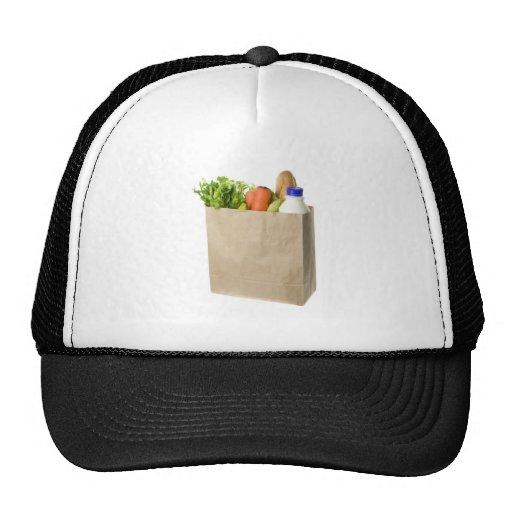 Paper bag full of groceries hat