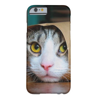 Paper cat - funny cats - cat meme - crazy cat barely there iPhone 6 case