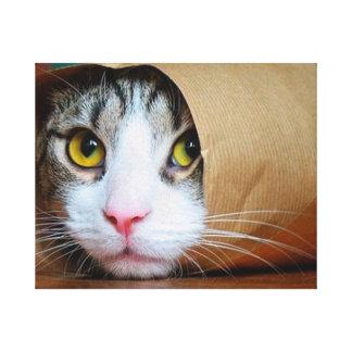 Paper cat - funny cats - cat meme - crazy cat canvas print