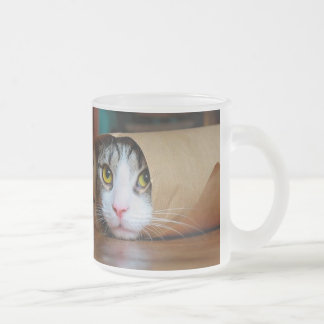 Paper cat - funny cats - cat meme - crazy cat frosted glass coffee mug