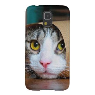 Paper cat - funny cats - cat meme - crazy cat galaxy s5 cover