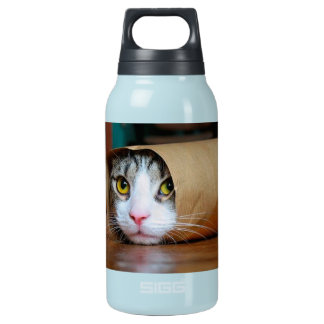 Paper cat - funny cats - cat meme - crazy cat insulated water bottle