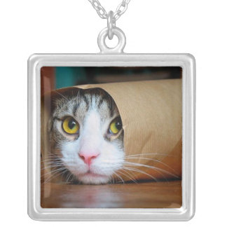 Paper cat - funny cats - cat meme - crazy cat silver plated necklace