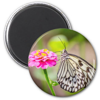 Paper Kite Butterfly 6 Cm Round Magnet
